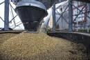Grève du CN: nouvelle tuile pour les agriculteurs