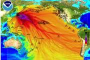 Sites web pour retrouver les disparus au Japon
