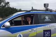 Le nid-de-poule, défi profond pour l'auto sans conducteur