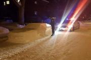 Une fausse Toyota en neige et... sa contravention
