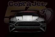 Beaucoup de caoutchouc brûlé en persective pour les 50 ans de la Mustang Cobra Jet
