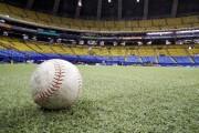Stade olympique baseball - 0203.JPG