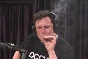 Elon Musk fume un joint en ondes, l'action de Tesla a un gros down