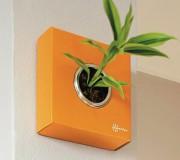 La Flowerbox permet de revisiter la plante de... (Photo fournie par Flowerbox) - image 1.0
