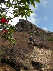 Sur le sentier du Druk Trek, à 4000... (Photo: André Désiront, La Presse) - image 2.0