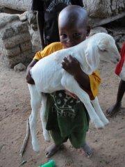 Le Petit Prince, version malienne... (Photo: Bruno Blanchet, collaboration spéciale) - image 1.0
