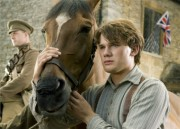 War Horse... (Photo: Disney/Buena Vista) - image 2.0