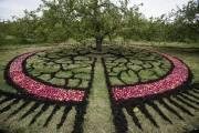 ÉveIL d'agnès Dumouchel est un gigantesque mandala tracé... (Photo: Édouard Plante-Fréchette, La Presse) - image 2.0