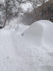 Les artères de Montréal - comme la rue... (La Presse Canadienne) - image 1.0