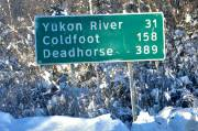 Le poste de  ravitaillement de Coldfoot est situé au nord du cercle polaire arctique. Lors du dernier  recensement  américain, la population fixe de Coldfoot s'établissait  à...10  habitants!