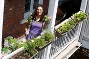 Chez Rachel Vincent, chargée de projet en agriculture... (Le Soleil, Yan Doublet) - image 2.0
