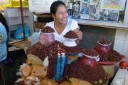 Une vendeuse de chapulines, des criquets frits très... (Sylvie Ruel, collaboration spéciale) - image 2.0