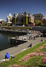 L'Inner Harbour, centre névralgique de la ville.... (Photo Bernard Brault, La Presse) - image 2.0
