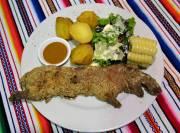 La viande de cuy dont la saveur hésite... (Photo Chris Bouroncle, AFP) - image 2.0