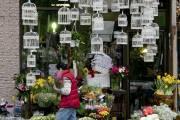 Montréal, son caractère créatif et... (Photo: David Boily, La Presse) - image 3.0