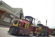 Les petits trains de Trains & Trams Wattman.... (PHOTO TRAINS & TRAMS WATTMAN) - image 6.0