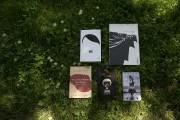 Que lire cet été? Voici plus de 20 suggestions de livres à savourer pendant la... - image 4.0