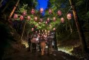 Le parcours de Foresta Lumina nous charme dans... (Photo: Jocelyn Riendeau, La Tribune) - image 2.0