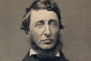 Henry David Thoreau... - image 8.0