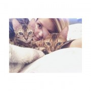 Sarah-Jeanne Labrosse et ses chats.... (Photo tirée du Instagram sarahlabrosa) - image 2.0