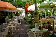 Coconut Grove, un quartier bobo-chic de Miami qui... (Photo David Boily, Archives La Presse) - image 2.0