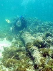 L'UNESCO, à la demande des autorités haïtiennes, avait... (PHOTO WHYDAH) - image 2.0