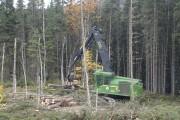 L'utilisation de la biomasse forestière permettrait de réduire... (PHOTO ARCHIVES LA PRESSE) - image 4.0