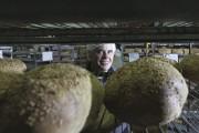Benoit Faucher, président de Boulangerie St-Méthode.... (PHOTO STÉPHANE CHAMPAGNE, COLLABORATION SPÉCIALE) - image 2.0