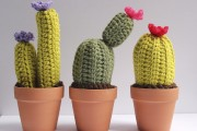 Pour faire pousser un cactus, il faut... (Photo fournie par le fabricant) - image 3.1