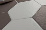 Les formes hexagonales sont très en vogue en... (Céragrès) - image 1.0