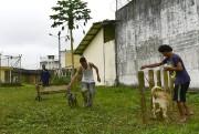 Chaque jour, une visite inhabituelle les attend à... (PHOTO RODRIGO BUENDIA, AFP) - image 2.1