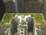 Les toits verts permettent d'améliorer la qualité... (Photo Wikimedia Commons.) - image 3.0
