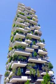 Les toits verts permettent d'améliorer la qualité de... (Shutterstock, ValeStock) - image 4.0