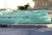 Peu importe leur couleur, les toiles étendues sur... (www.jardinierparesseux.com) - image 3.0