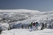 De véritables champs de neige attendent les skieurs... (PHOTO FOURNIE PAR SKI CHIC-CHOCS) - image 1.0