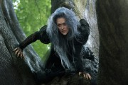 Meryl Streep, la méchante sorcière dans Into the Woods.... (PHOTO FOURNIE PAR DISNEY) - image 1.0