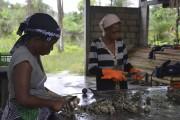 Sur la plage du Cap Estérias, les employés... (AFP) - image 1.0