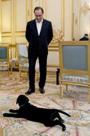 François Hollande et Philae... (PHOTO AFP/PRÉSIDENCE DE LA RÉPUBLIQUE) - image 1.0