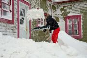 L'Est-du-Québec se relève petit à petit de la... (Collaboration spéciale Johanne Fournier) - image 1.0