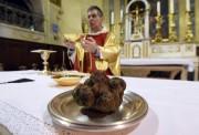 Une magnifique truffe noire de 650 g a... (PHOTO PASCAL GUYOT, AFP) - image 1.0