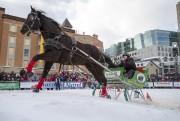 Le Derby St-Hubert, qui accueillera une quarantaine de... (Photo fournie par Action promotion Grande Allée) - image 5.0