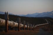 En Alaska commen ailleurs dans le Nord, le... (PHOTO LUKE SHARRETT, ARCHIVES NEW YORK TIMES) - image 4.0