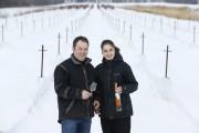 Le vignoble urbain Thierry Kobloth produit annuellement 16000... (Photo Martin Chamberland, La Presse) - image 3.0