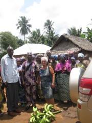 Les habitants d'un village offrent une branche de... - image 3.0