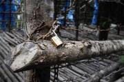 Un cadenas était toujours présent sur une clôture... (PHOTO JOSHUA PAUL, AP) - image 1.0