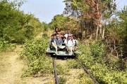 Chaque «wagon» est une plateforme de bambou de... (Photo Elyse Lévesque, collaboration spéciale) - image 1.0