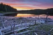 Juin. Le mois est synonyme... (Photo fournie par Tourisme Abitibi-Témiscamingue) - image 11.0