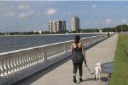 Bayshore permet de se promener sur plus de... (PHOTO SYLVAIN SARRAZIN, LA PRESSE) - image 1.1