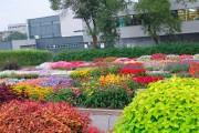 Le jardin d'essai du Jardin botanique Roger-Van den... (Photo fournie par le Jardin botanique Roger-Van den Hende) - image 1.0