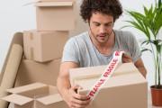 Il faut veiller à bien sceller les boîtes,... (Shutterstock, Rido) - image 2.0